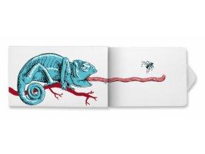 images product zvykacky chameleon 2d